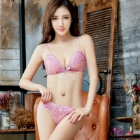 【Anna Mu】情趣內衣 粉紫柔紗刺繡情趣比基尼二件組(NA15030012)