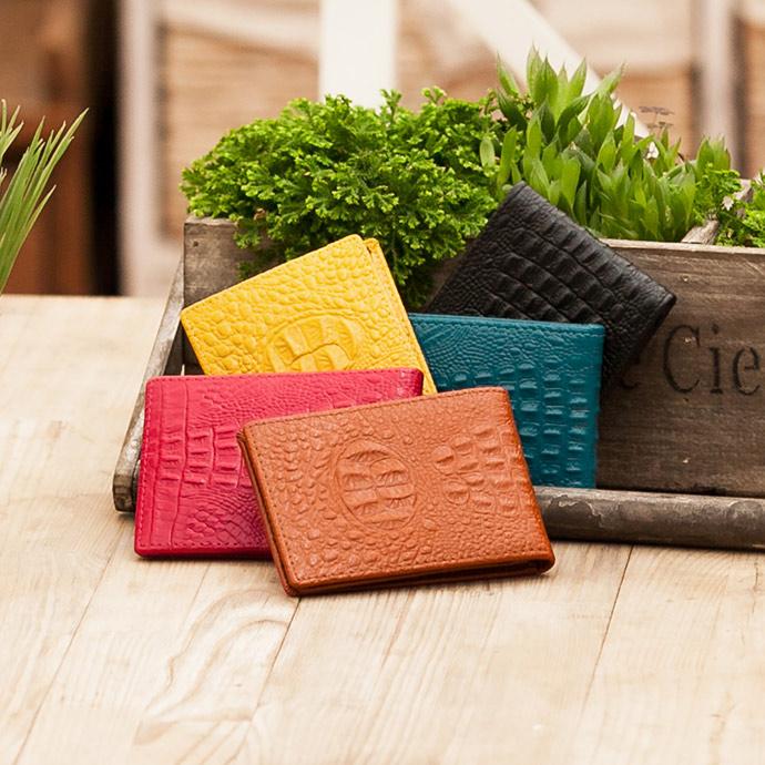 CHENSON 真皮專業形象 薄型駕照夾/名片夾 咖(W00009-N)